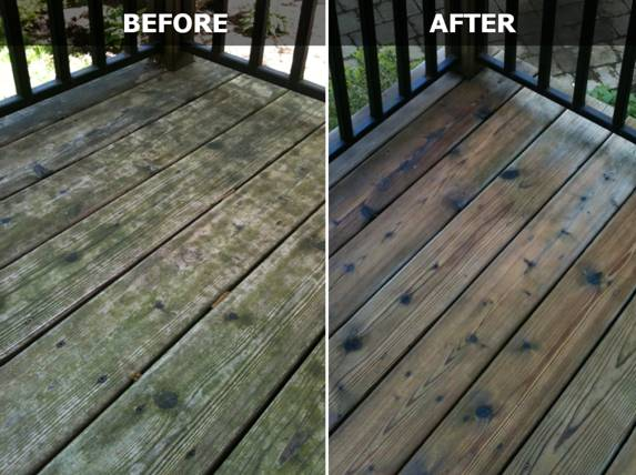 how to clean mold off wood deck
