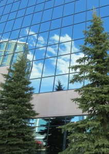Kanata Research Park - reflecting trees in mirrored glass