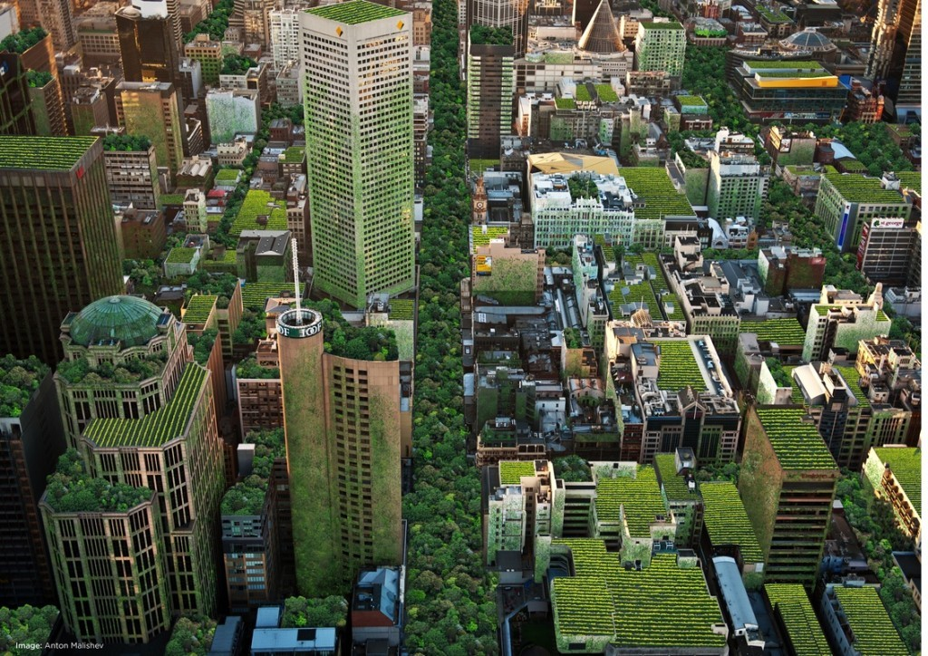 Artist's rendering of green roof potential of Melbourne, Australia. http://www.theage.com.au/victoria/new-maps-show-melbournes-unused-rooftops-are-ripe-for-greening-20151109-gku4yq.html
